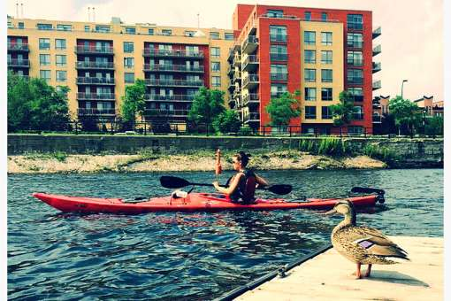 Sea kayaking and duck on the Lachine Canal