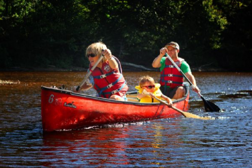 Canoe, Kayak, Paddleboard - Rouge River