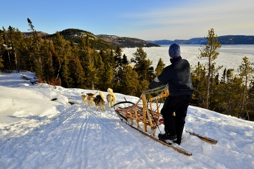 Dog Sledding on the Saguenay Fjord