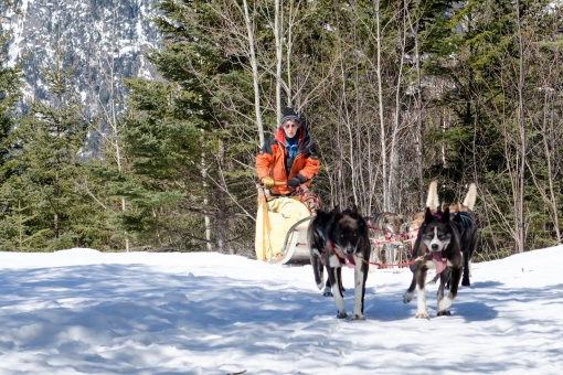 Charlevoix in dogsledding expedition