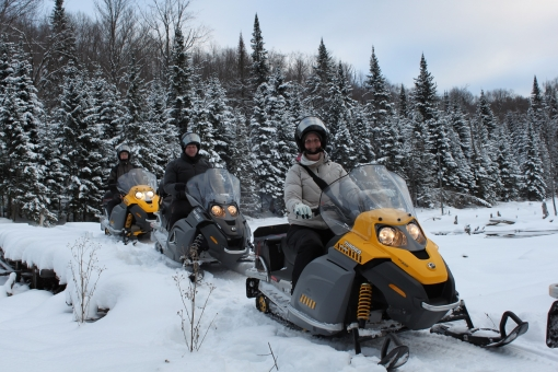 Half day of guided snowmobile excursion