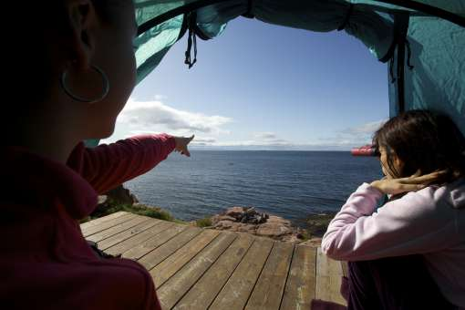 Whales observation from tent