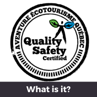 Quality-Safety logo : what is it